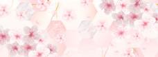 春季上新樱花节banner