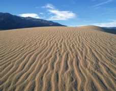 沙漠荒丘风景