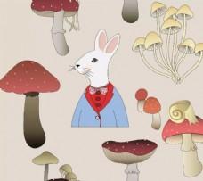 兔子蘑菇组合