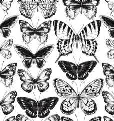 蝴蝶素描图案