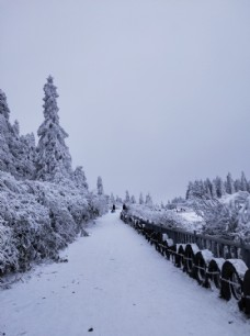 仙女山雪景