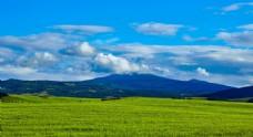 白云下的草原