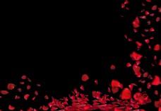 卡通红色花瓣设计元素