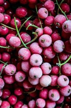 蓝莓 草莓 水果