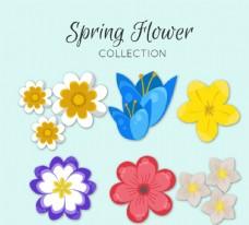 彩色质感春季花卉