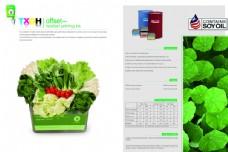 蔬菜画册宣传册画面