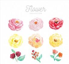 9款水彩绘花朵设计