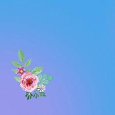 简约大气唯美清新文艺花卉渐变主图