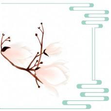 春季花卉木兰树望春花旱荷花早春花卉边框