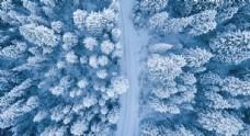 白雪皑皑的森林俯拍