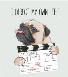 拍电影的狗