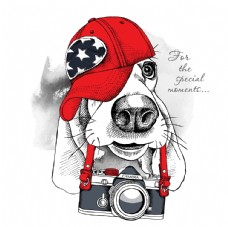 狗和照相机卡通形象