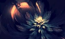 绽开的花朵背景