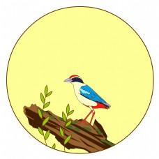 中国风花鸟圆形边框仙八色鸫矢量免抠图
