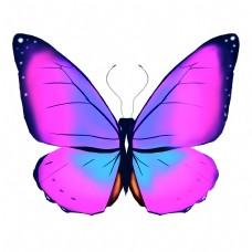紫色的蝴蝶装饰插画