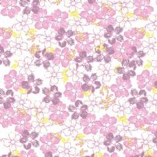 清新樱花平铺图