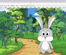 在森林里往外面走的兔子10秒