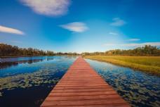 湖水浮桥蓝天白云碧草连天