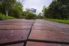 林间小路之分岔路口