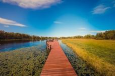 蓝天白云下的湖水浮桥碧草