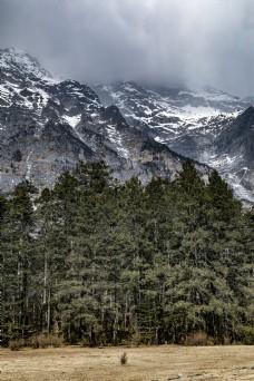 自然风光雪峰云雾森林26