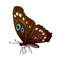 棕色蝴蝶装饰插画