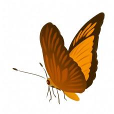 黄色的蝴蝶装饰插画