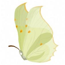 浅黄色的昆虫蝴蝶插画