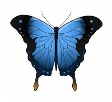 漂亮的蝴蝶装饰插画