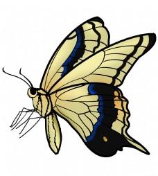 黄灰色蝴蝶装饰插画