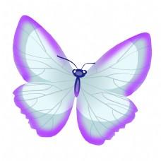 粉色的昆虫蝴蝶插画
