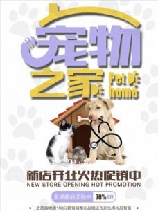 宠物之家海报