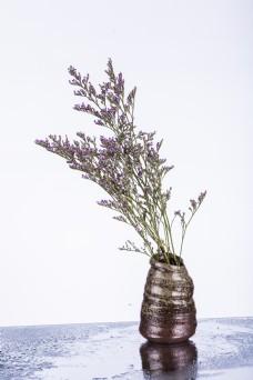 一枝干花插在花瓶中