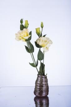 一小支桔梗插在花瓶中