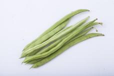 常见的蔬菜之四季豆2