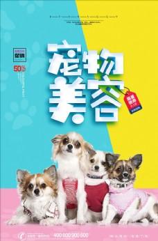 宠物美容医院宣传海报
