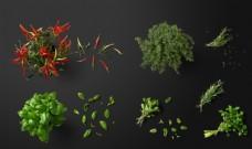PSD蔬菜