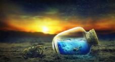 日落 螃蟹 瓶子 海洋