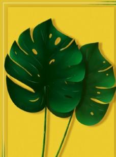 熱帶樹葉背景