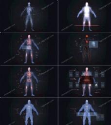 模拟人体扫描的效果
