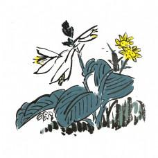 中国风水墨风荷花荷叶手绘插画