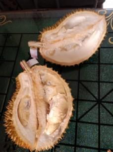 榴莲图片 水果