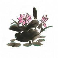 夏季荷花手绘插画