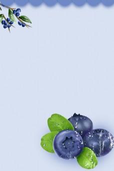 进口食品水果蓝莓背景