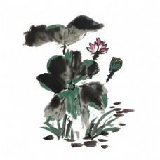 夏天荷花荷叶中国风手绘插画