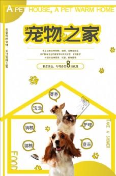 精美黄色宠物海报
