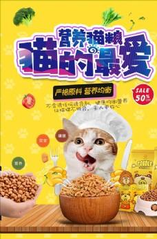 猫粮宠物猫海报
