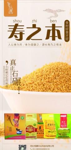 黄小米广告杂粮灯箱片