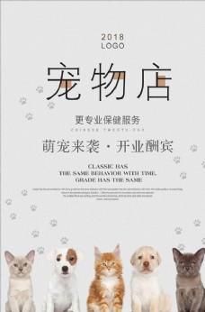 简约宠物店海报